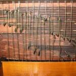 Integrazioni in araldite su legno