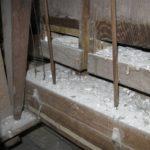 Canne lignee prima del restauro